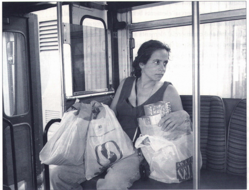 Food Access for the Transit Dependent